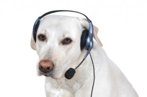 dog phone headset